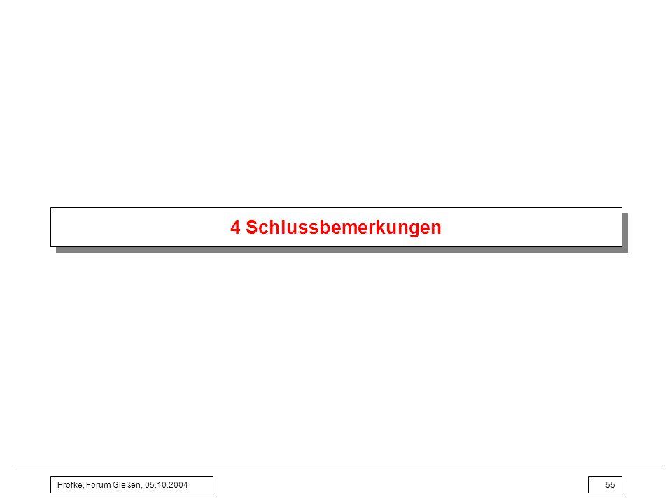 4 Schlussbemerkungen Profke, Forum Gießen, 05.10.2004