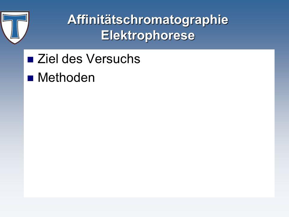 Affinitätschromatographie Elektrophorese