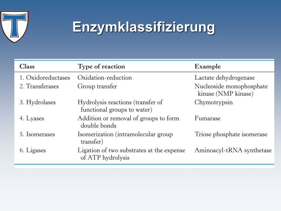 Enzymklassifizierung