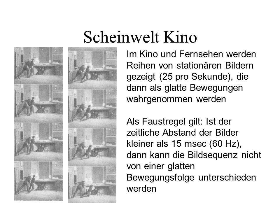 Scheinwelt Kino