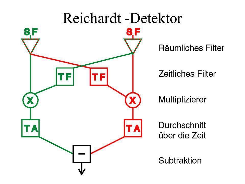 Reichardt -Detektor