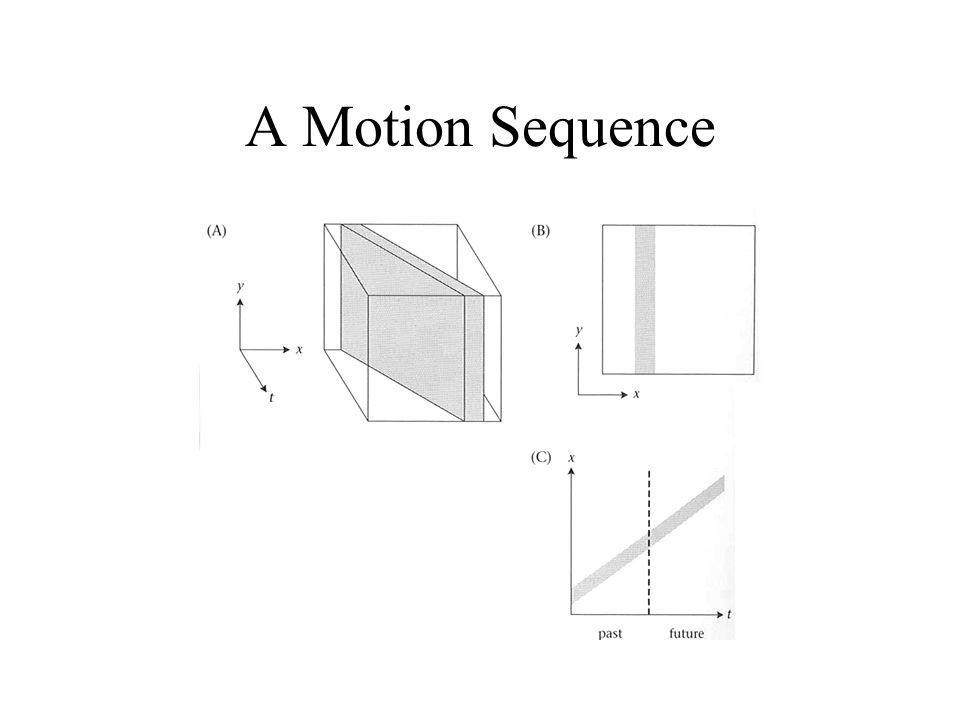 A Motion Sequence