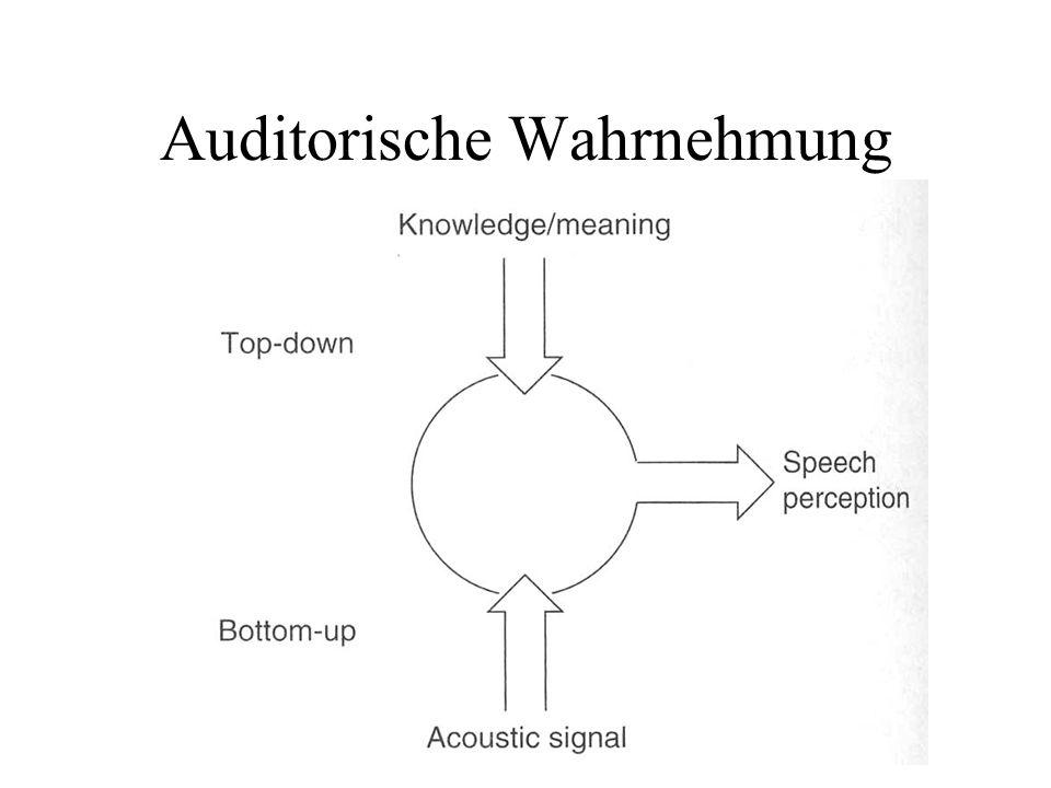 Auditorische Wahrnehmung