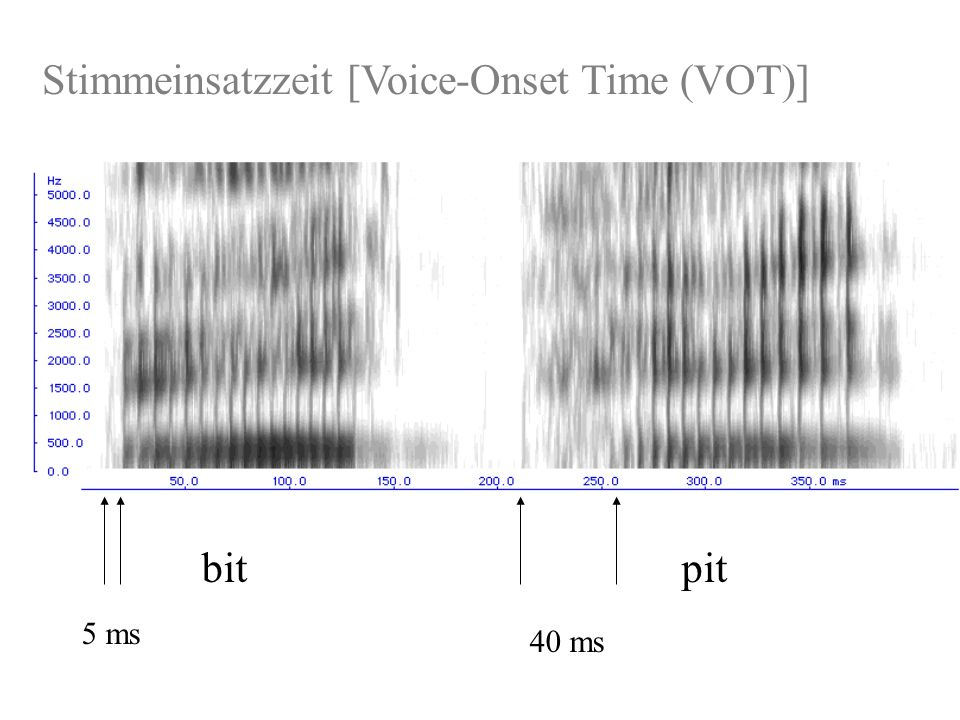 Stimmeinsatzzeit [Voice-Onset Time (VOT)]