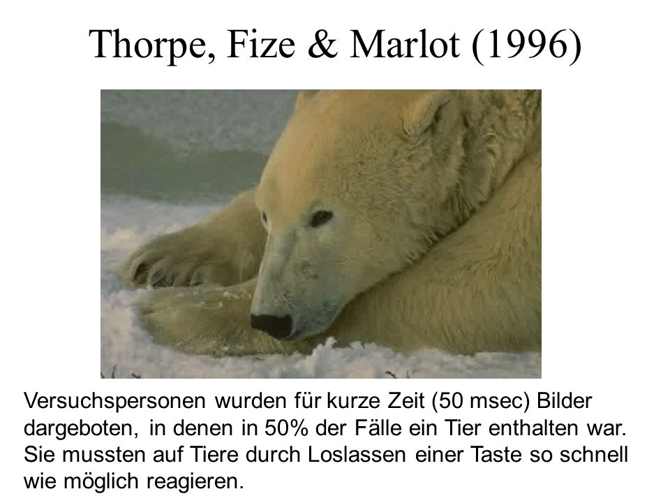 Thorpe, Fize & Marlot (1996)