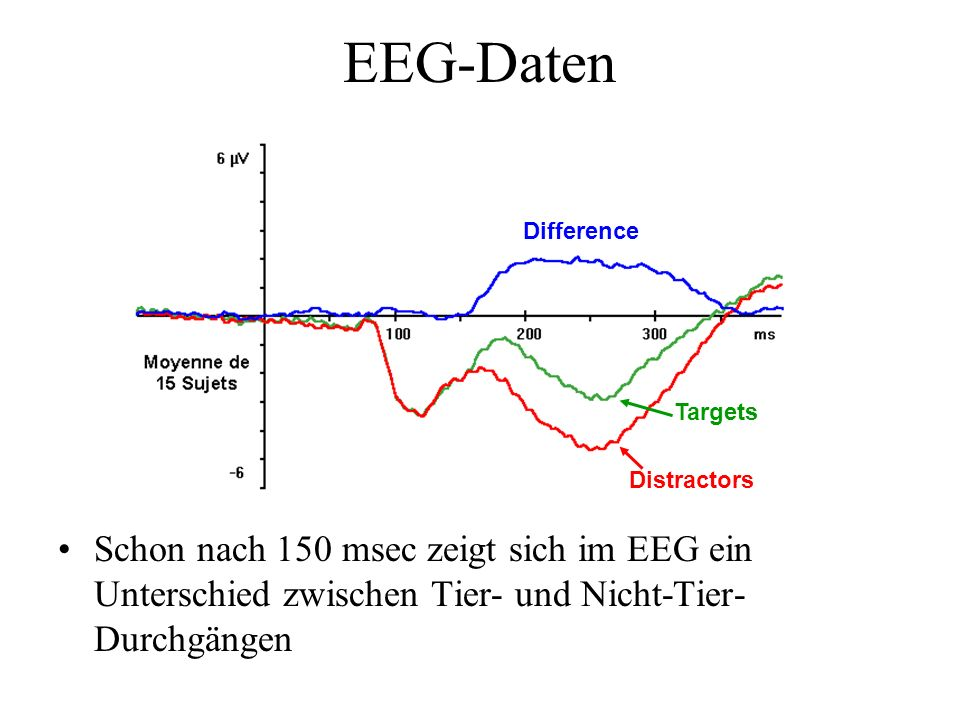 EEG-Daten Targets. Distractors. Difference.
