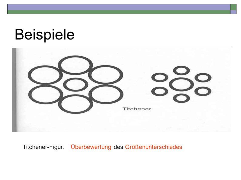 Beispiele Titchener-Figur: Überbewertung des Größenunterschiedes