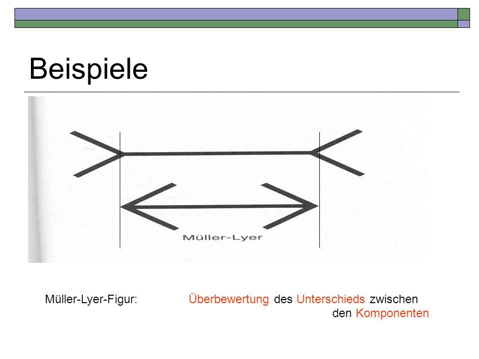 Beispiele Müller-Lyer-Figur: Überbewertung des Unterschieds zwischen den Komponenten