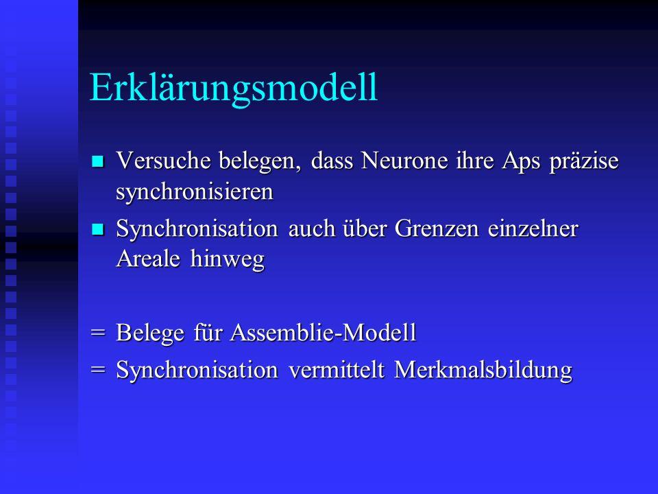 Erklärungsmodell Versuche belegen, dass Neurone ihre Aps präzise synchronisieren. Synchronisation auch über Grenzen einzelner Areale hinweg.