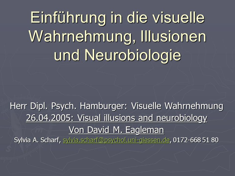 Einführung in die visuelle Wahrnehmung, Illusionen und Neurobiologie