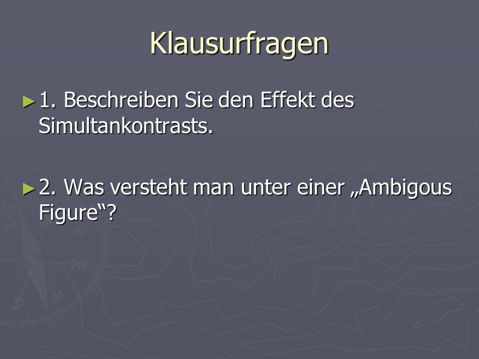 Klausurfragen 1. Beschreiben Sie den Effekt des Simultankontrasts.