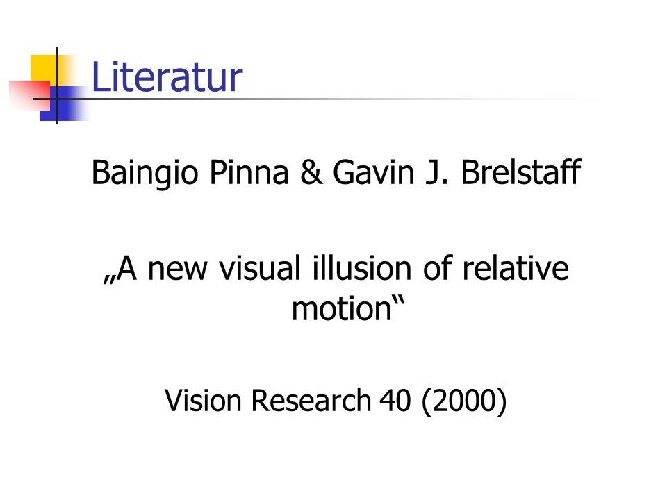 Literatur Baingio Pinna & Gavin J. Brelstaff