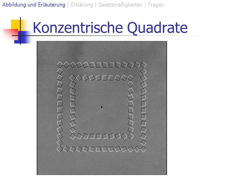 Konzentrische Quadrate