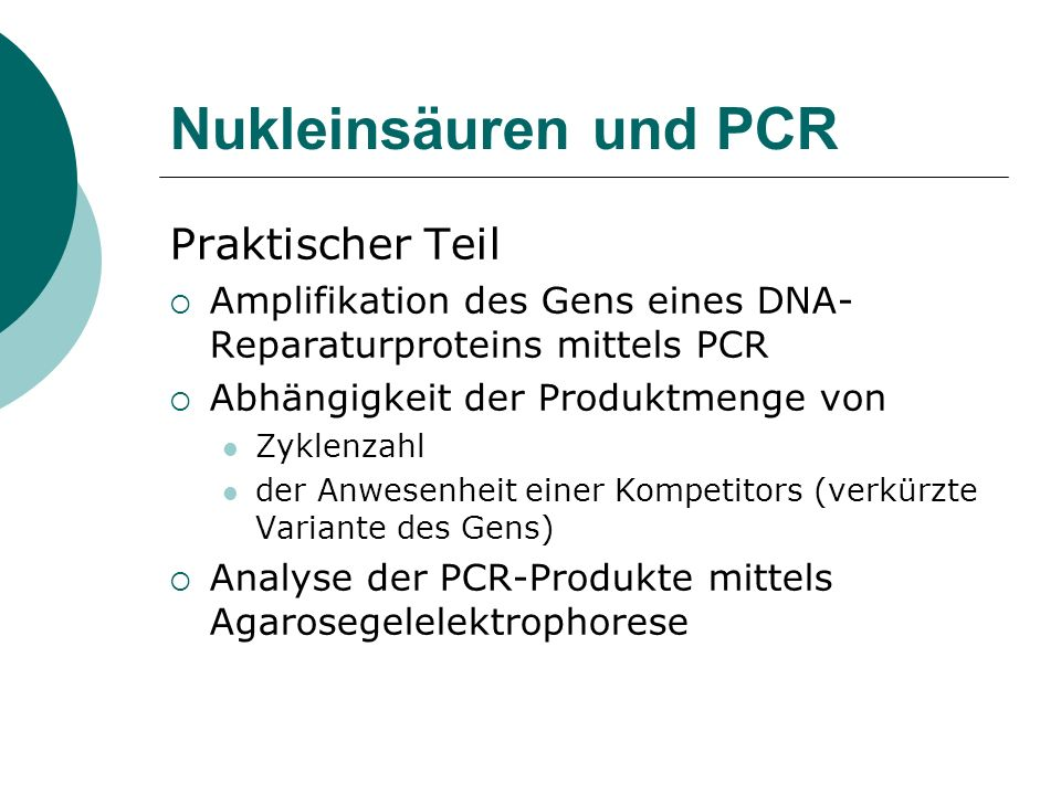 Nukleinsäuren und PCR Praktischer Teil