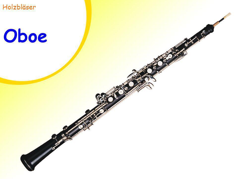 Holzbläser Oboe