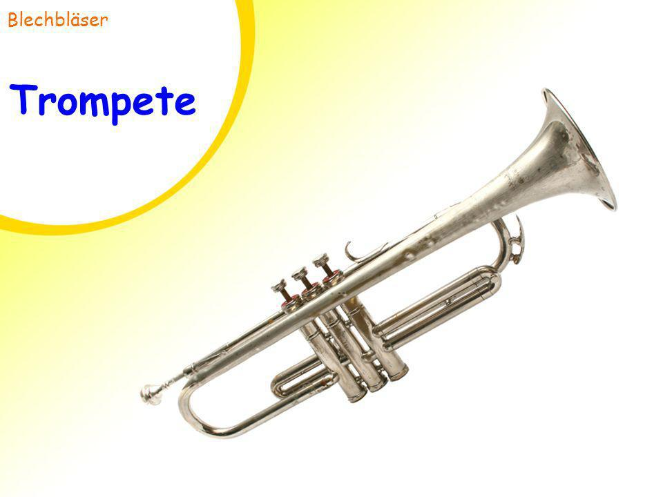 Blechbläser Trompete