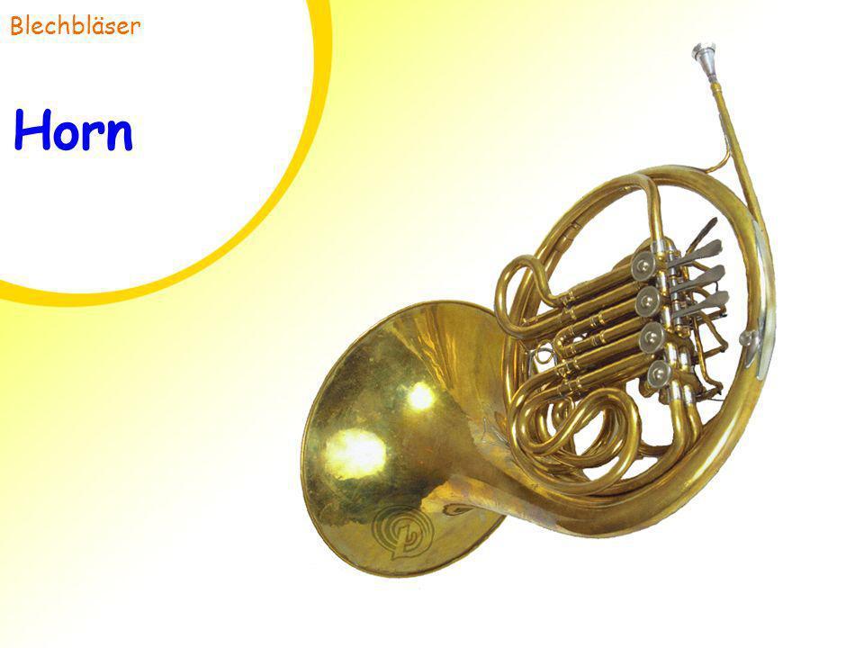 Blechbläser Horn