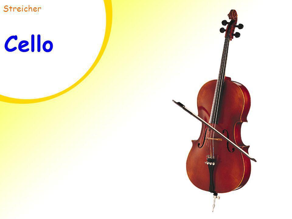 Streicher Cello