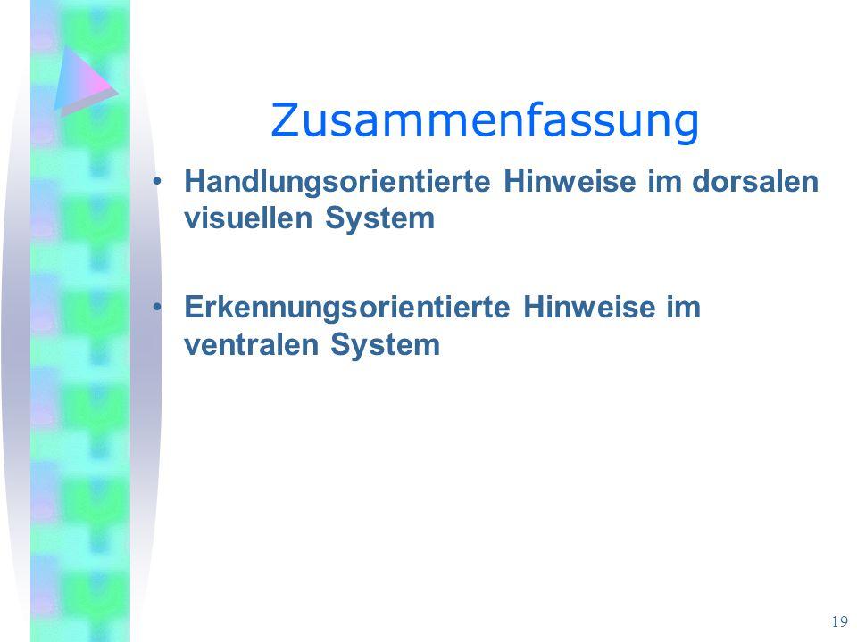 Zusammenfassung Handlungsorientierte Hinweise im dorsalen visuellen System.