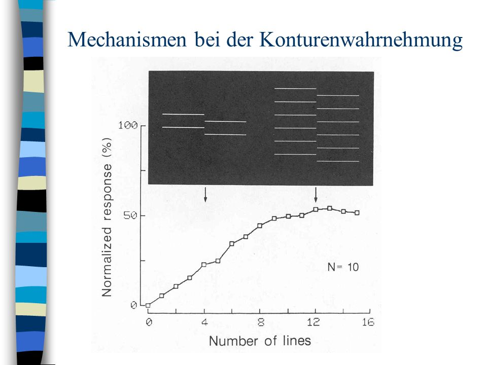free Numerical Methods and Optimization in Finance