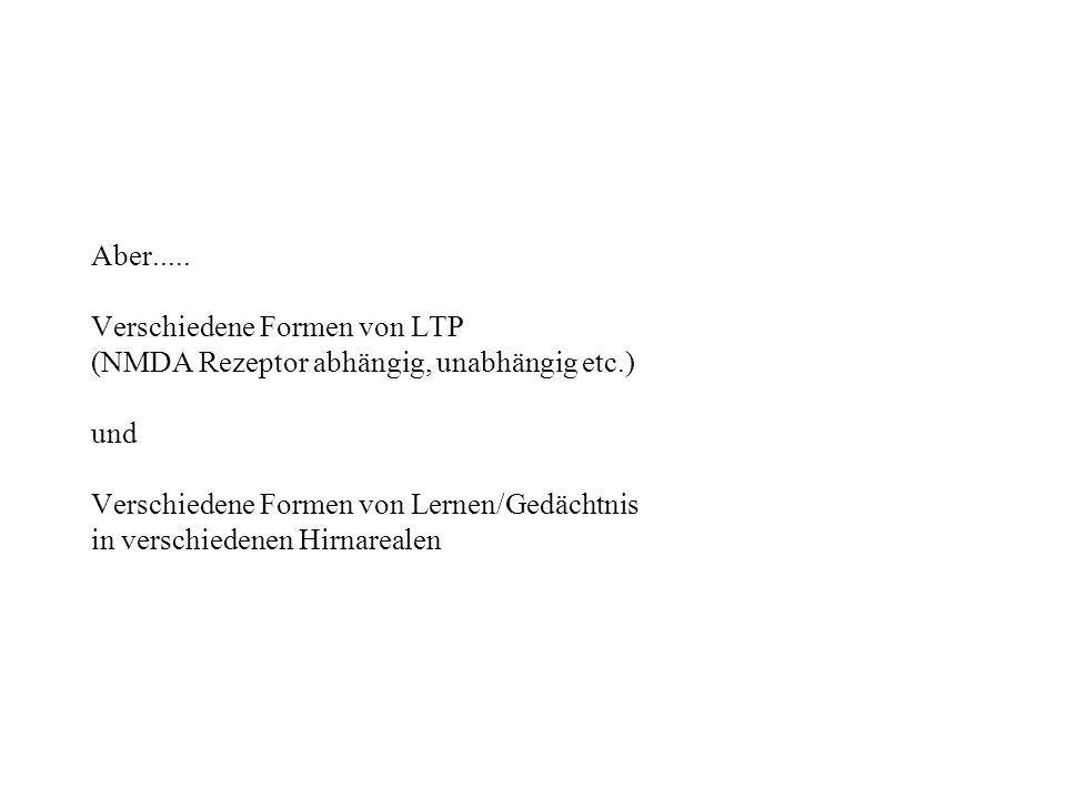 Aber..... Verschiedene Formen von LTP. (NMDA Rezeptor abhängig, unabhängig etc.) und. Verschiedene Formen von Lernen/Gedächtnis.