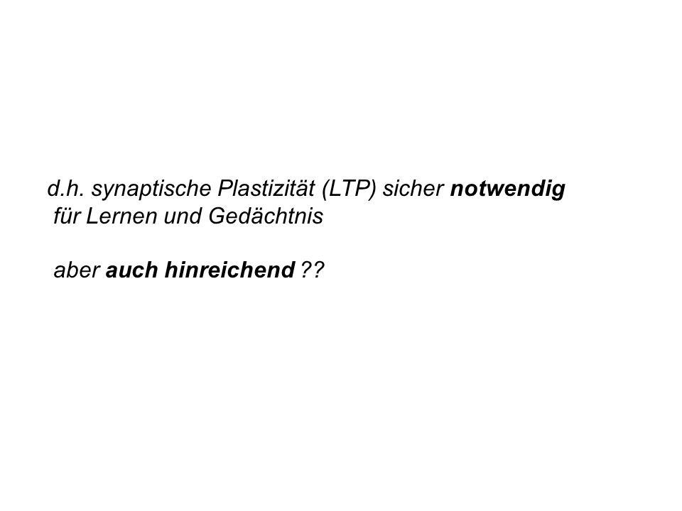 d.h. synaptische Plastizität (LTP) sicher notwendig