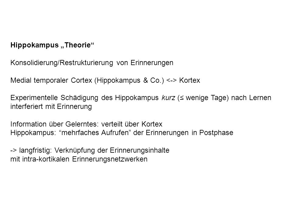 "Hippokampus ""Theorie"