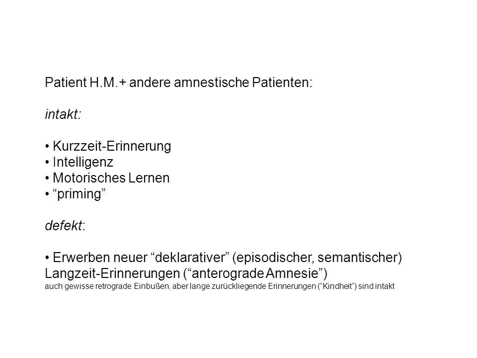 Patient H.M.+ andere amnestische Patienten: intakt: