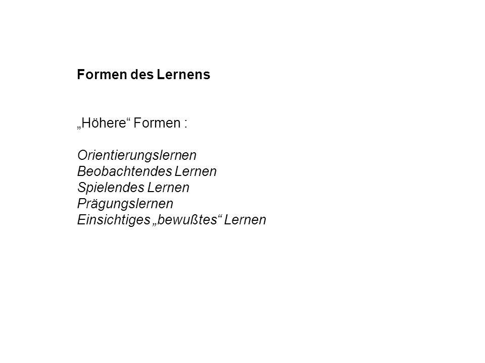 """Formen des Lernens """"Höhere Formen : Orientierungslernen. Beobachtendes Lernen. Spielendes Lernen."""