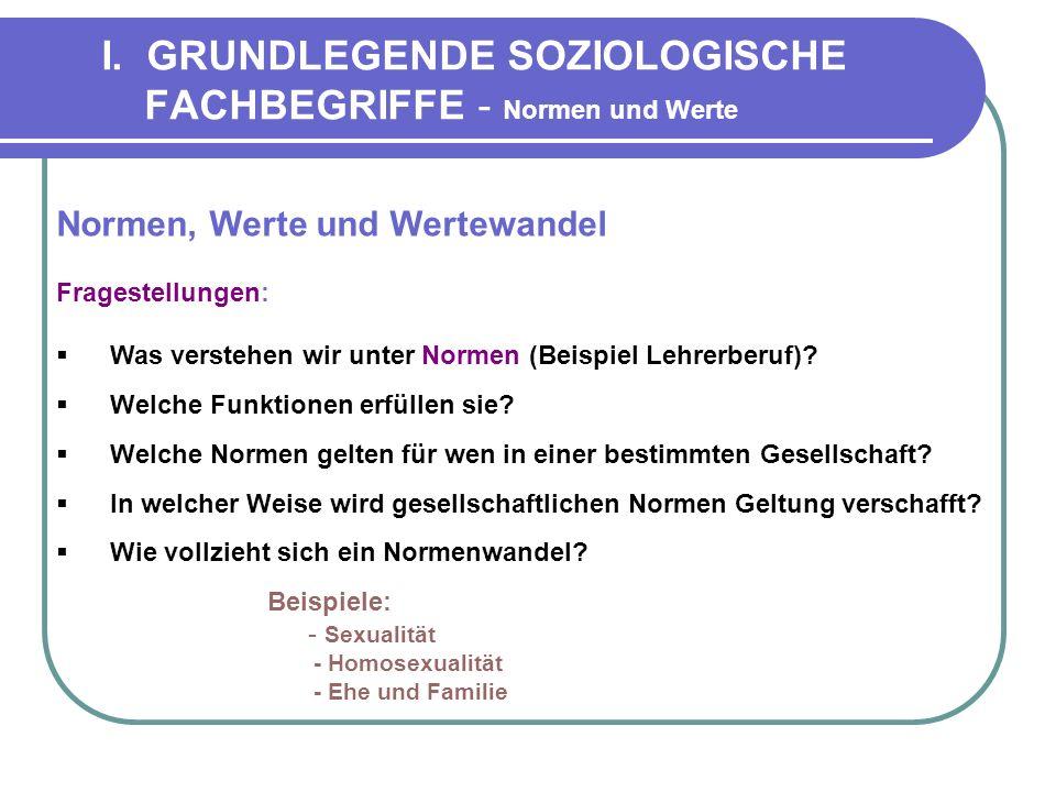 I. GRUNDLEGENDE SOZIOLOGISCHE FACHBEGRIFFE - Normen und Werte