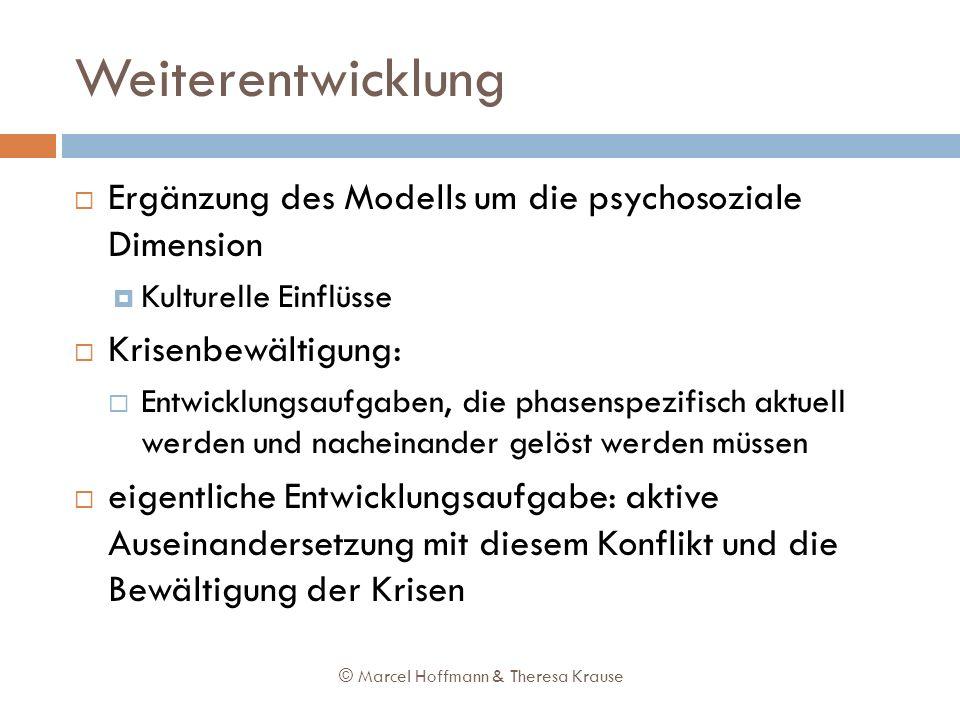 Weiterentwicklung Ergänzung des Modells um die psychosoziale Dimension