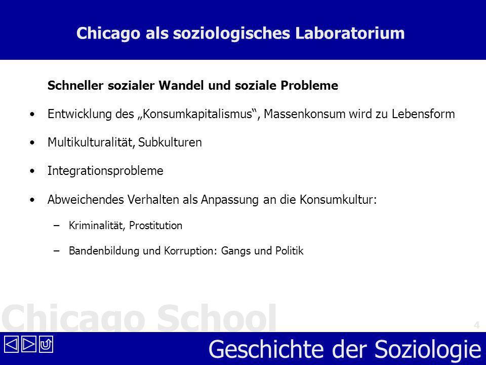 Chicago als soziologisches Laboratorium