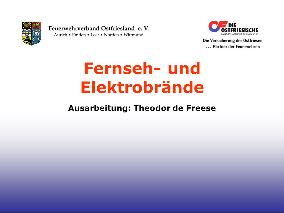 Ausarbeitung: Theodor de Freese