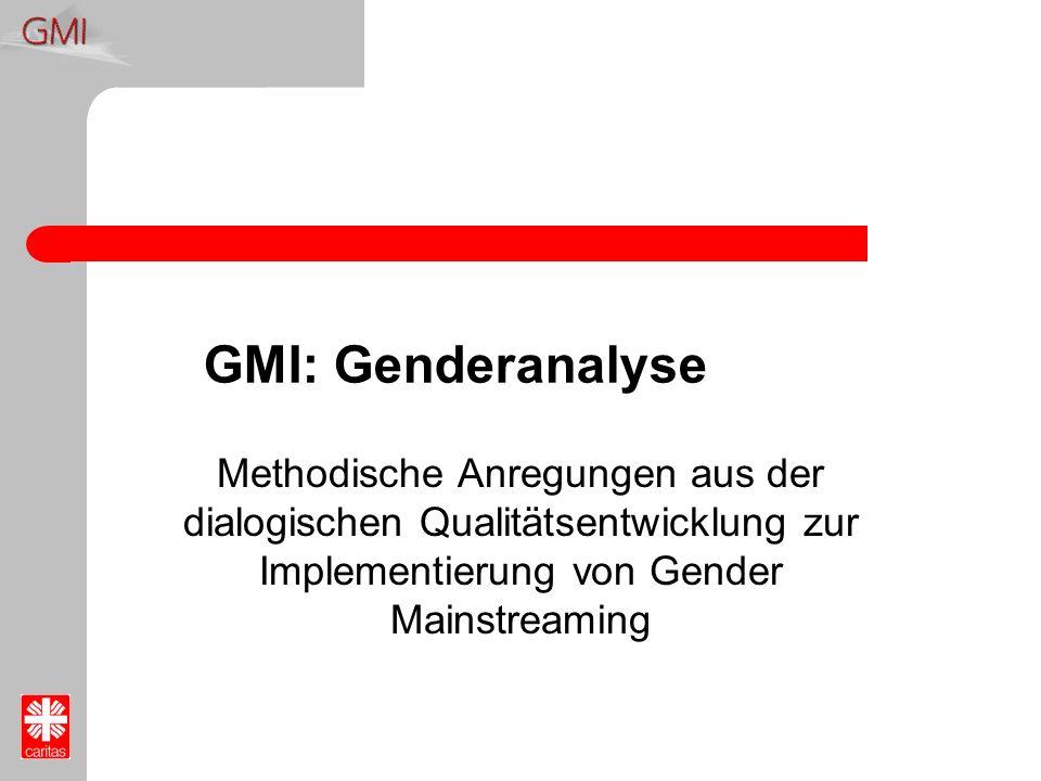 GMI: Genderanalyse Methodische Anregungen aus der dialogischen Qualitätsentwicklung zur Implementierung von Gender Mainstreaming.