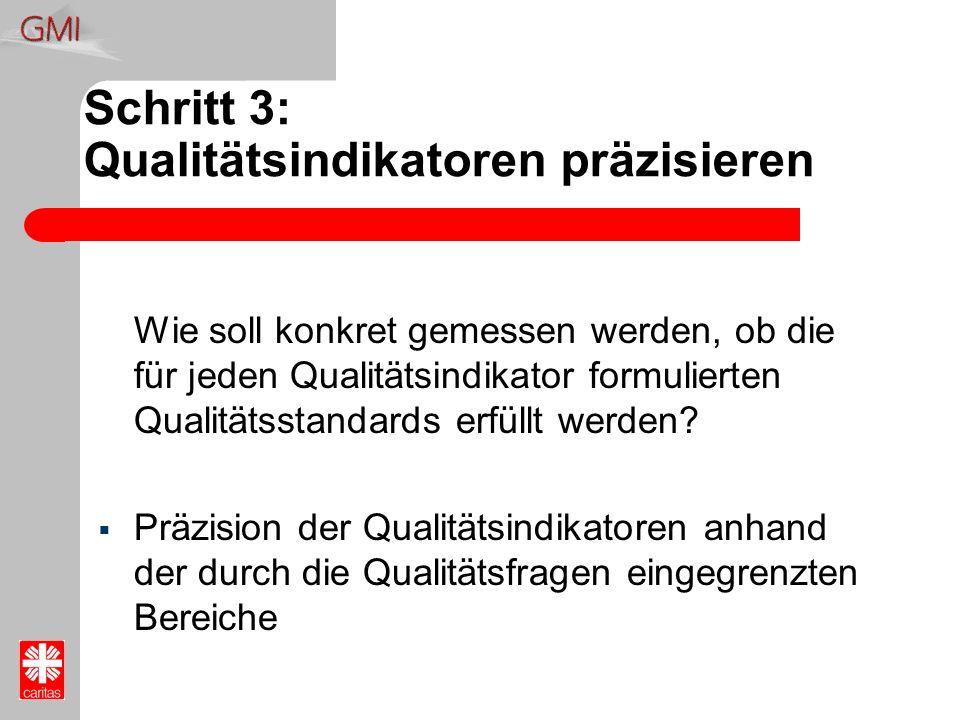 Schritt 3: Qualitätsindikatoren präzisieren
