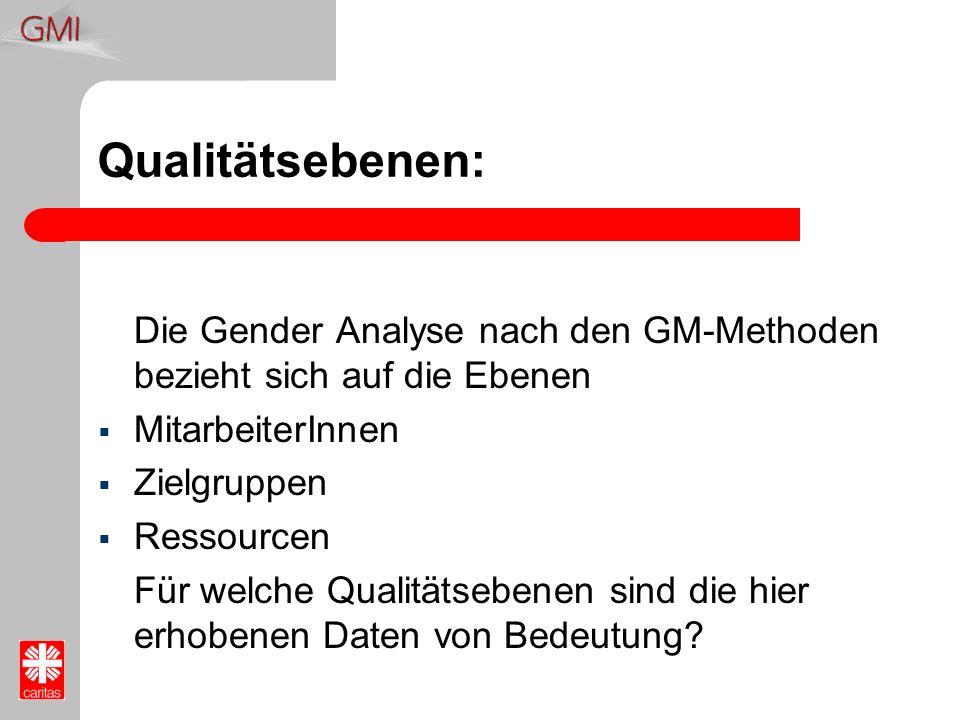 Qualitätsebenen: Die Gender Analyse nach den GM-Methoden bezieht sich auf die Ebenen. MitarbeiterInnen.
