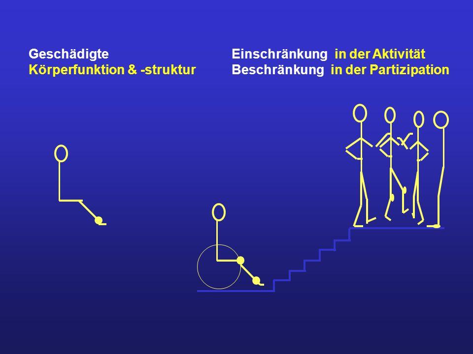 Geschädigte Körperfunktion & -struktur. Einschränkung in der Aktivität.