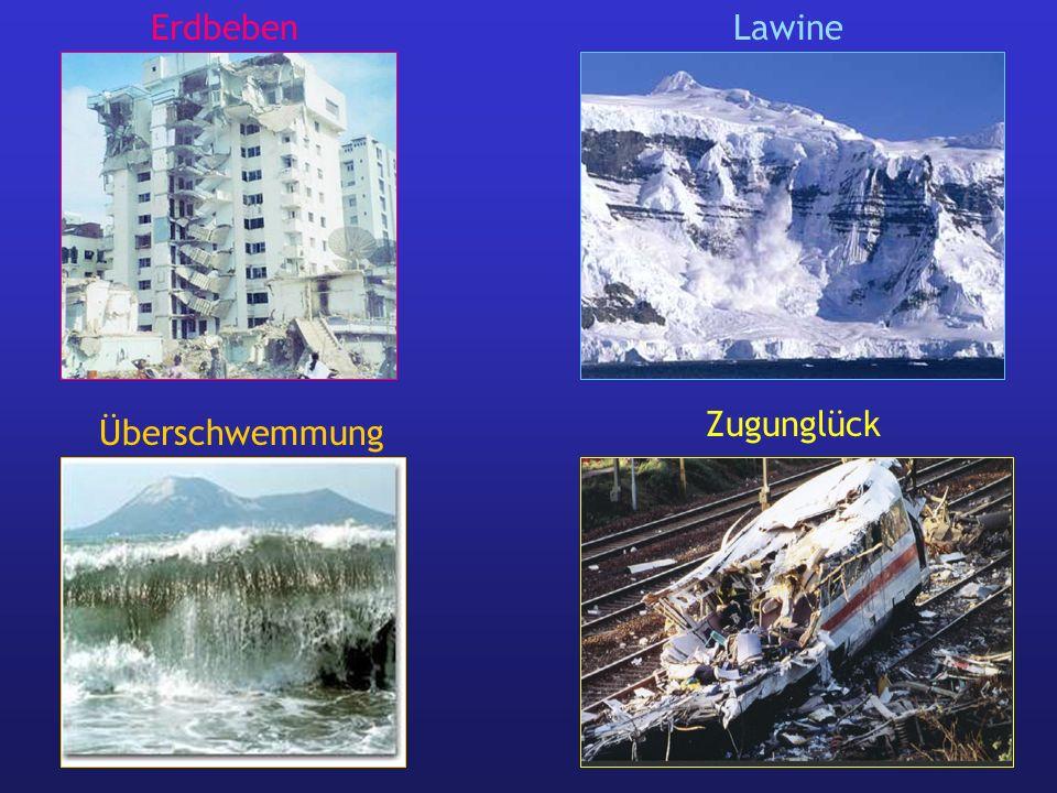Erdbeben Lawine Zugunglück Überschwemmung