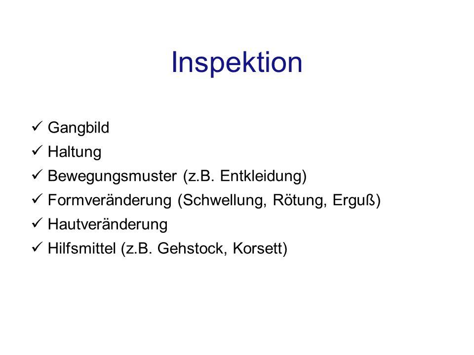 Inspektion Gangbild Haltung Bewegungsmuster (z.B. Entkleidung)