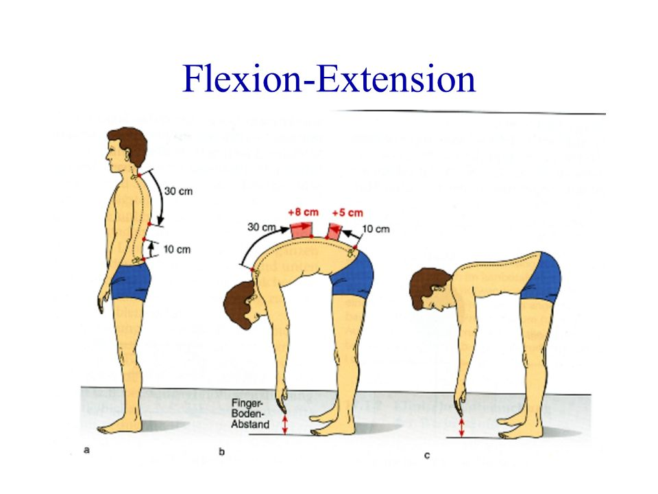 Flexion-Extension