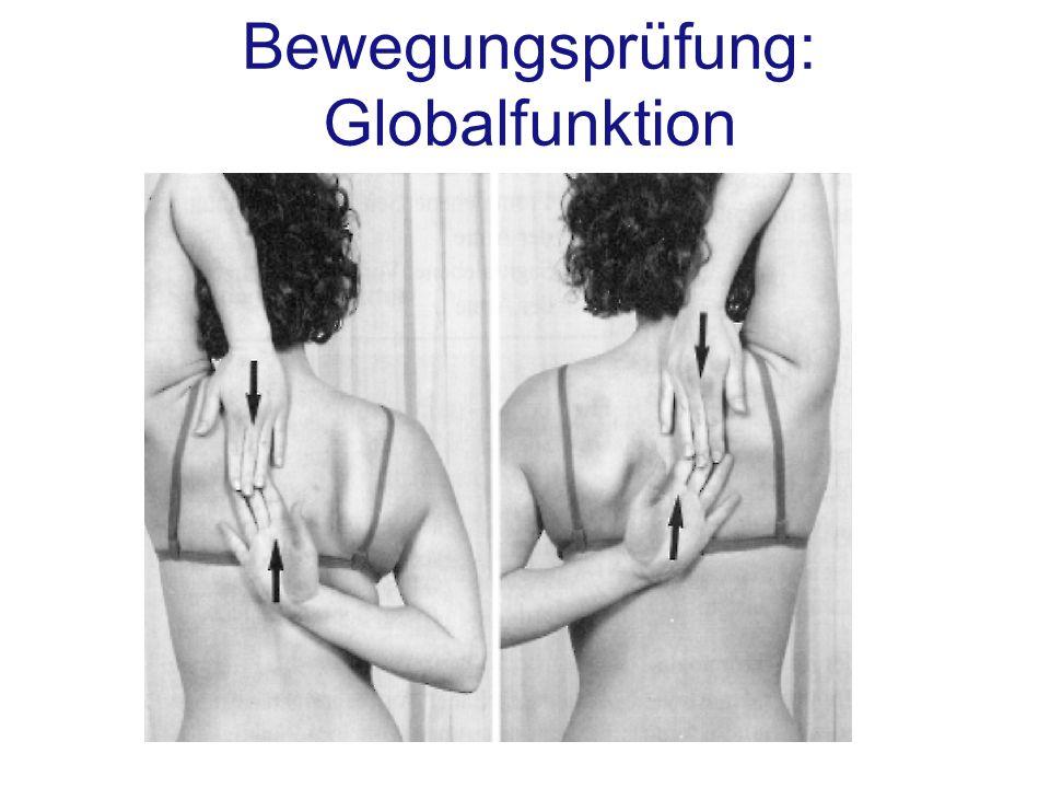 Bewegungsprüfung: Globalfunktion