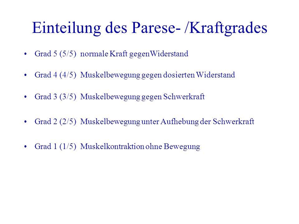 Einteilung des Parese- /Kraftgrades