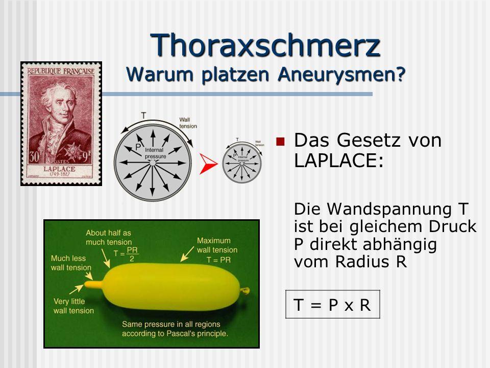 Thoraxschmerz Warum platzen Aneurysmen
