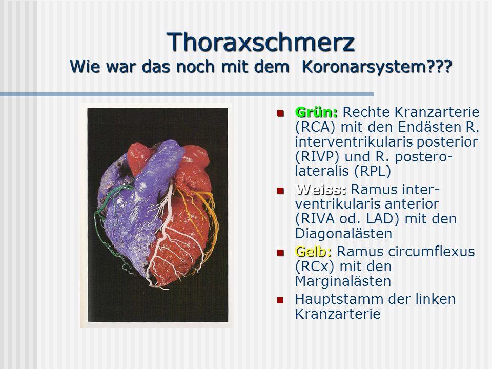 Thoraxschmerz Wie war das noch mit dem Koronarsystem