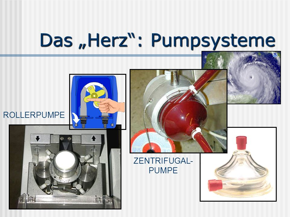 """Das """"Herz : Pumpsysteme"""