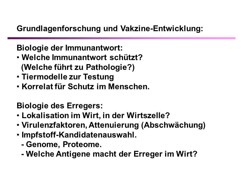 Grundlagenforschung und Vakzine-Entwicklung: