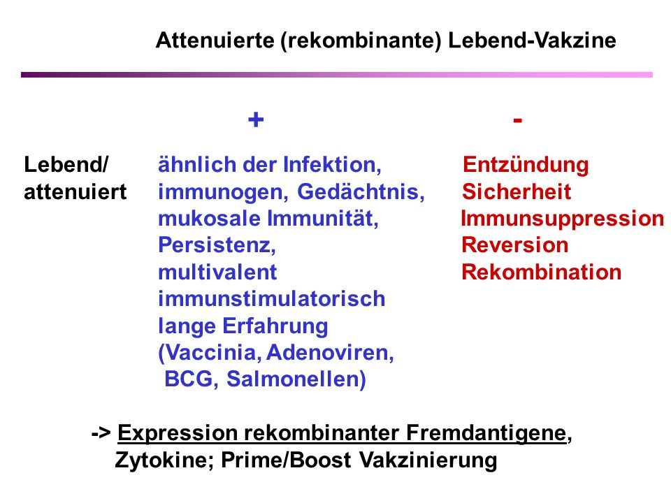 + - Attenuierte (rekombinante) Lebend-Vakzine