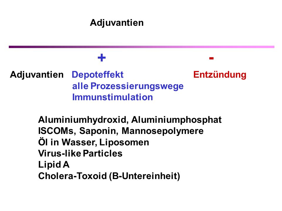 + - Adjuvantien Adjuvantien Depoteffekt Entzündung