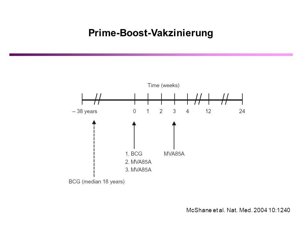 Prime-Boost-Vakzinierung