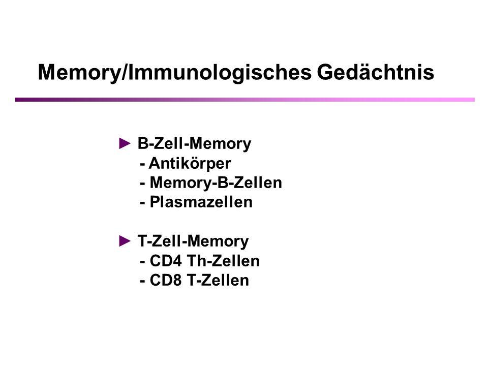 Memory/Immunologisches Gedächtnis